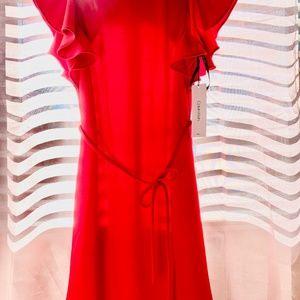 Calvin Klein Red Forma/Businessl Dress